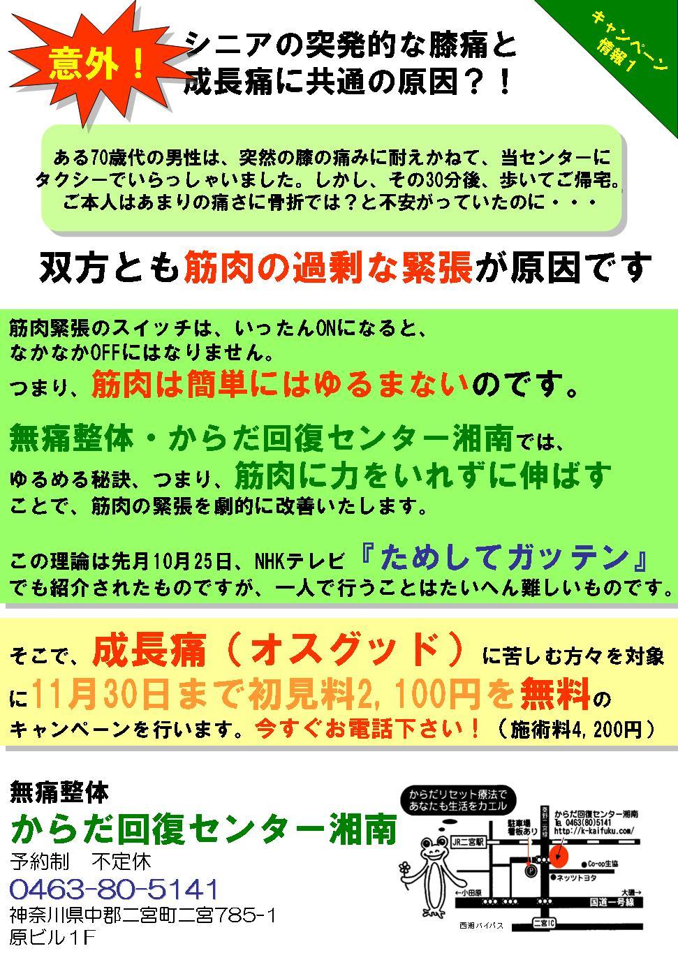 20061116-chirashi2.JPG