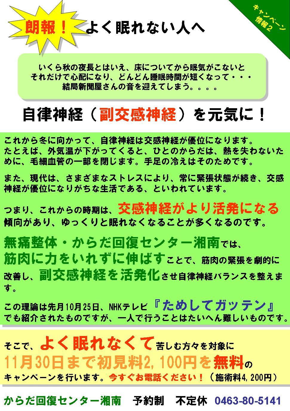 20061117-chirashi3.JPG